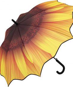 Solros paraplyet